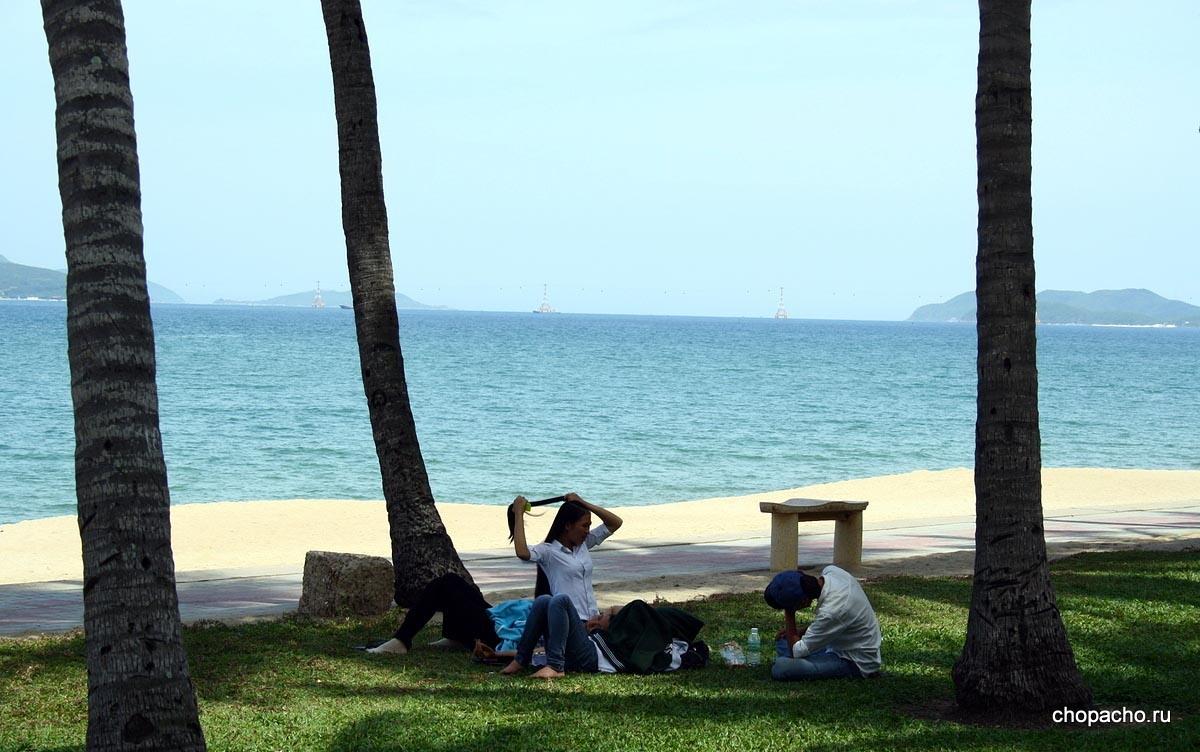 Местные отдыхают в парке у моря