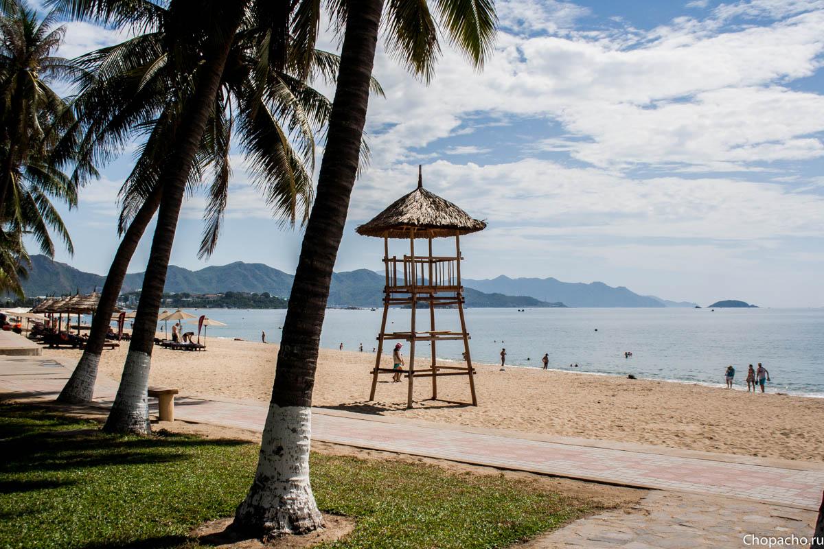 максимуме блеска пляж нячанга фото туристов жареные моховики