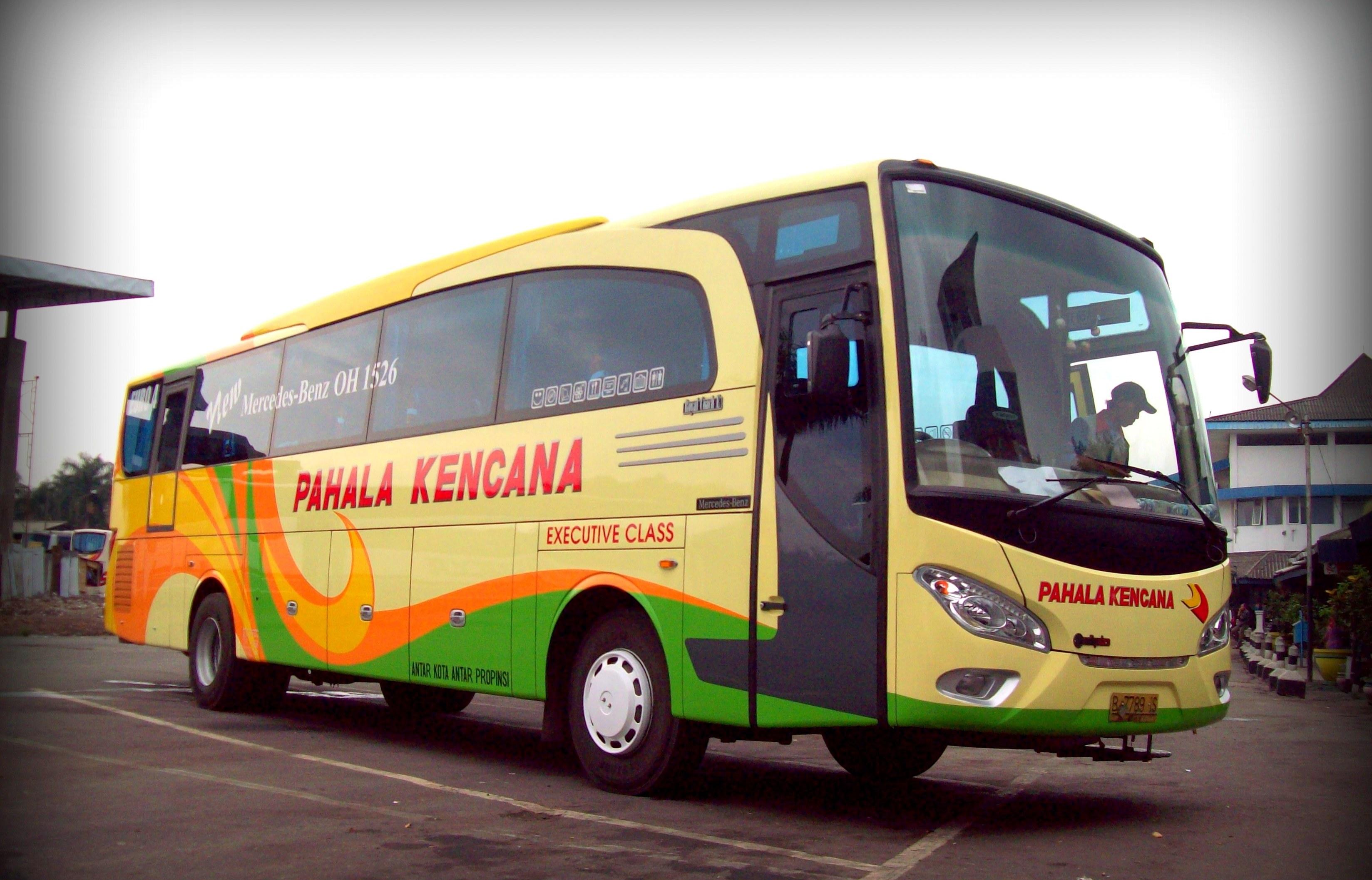 С Бали и до Джакарты 2016 (машина, паром, автобус, самолёт).