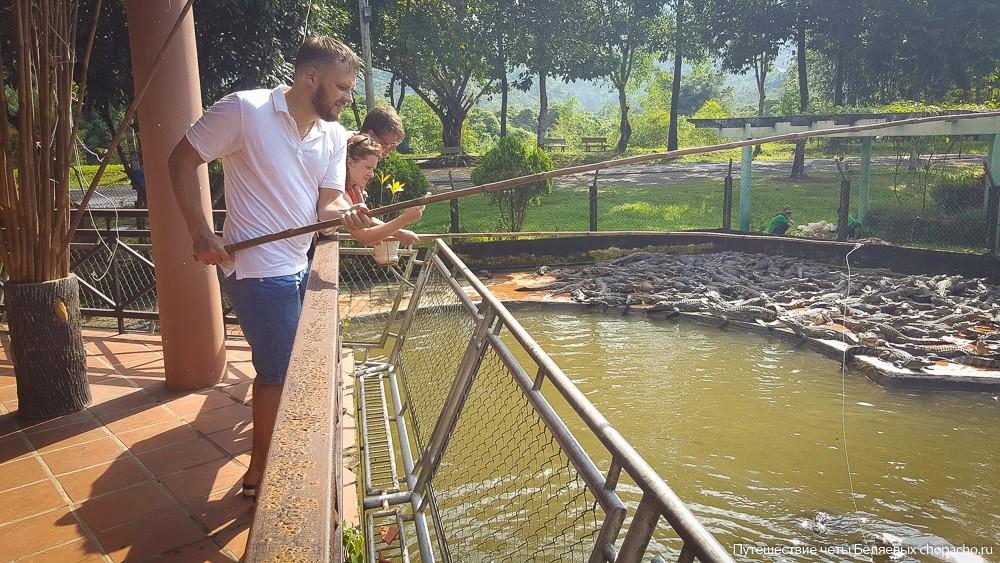 Кормим крокодилов в парке Янг Бей, Вьетнам, Нячанг.
