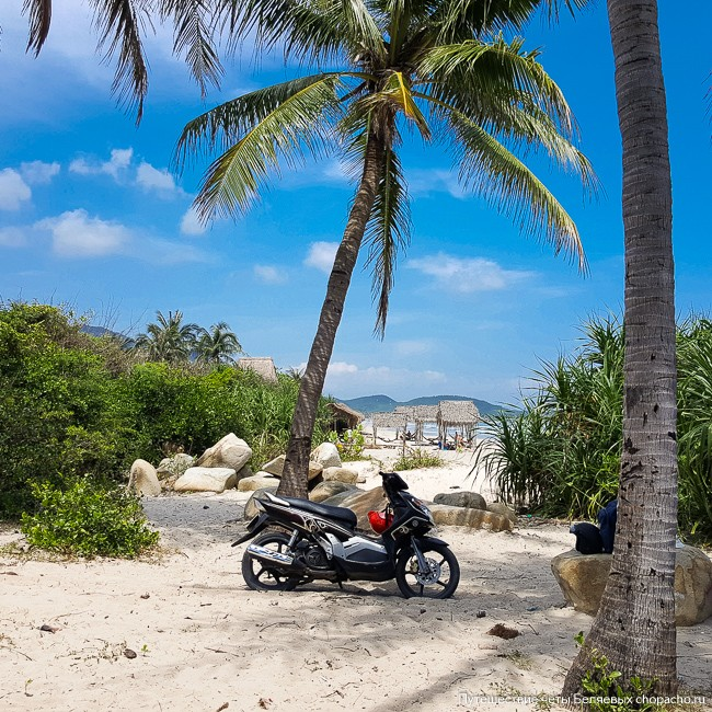Наш мотобайк под пальмой