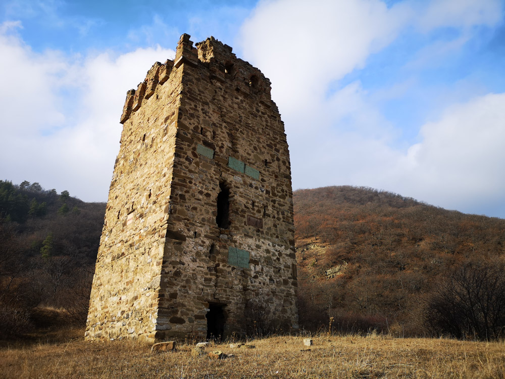 Смотровая башня в Грузии